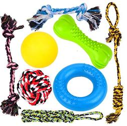 8 durable dog chew toys
