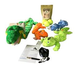 Dog Toy Bundle Kyjen Squeaker Matz, Three Zanies Plush Bunge
