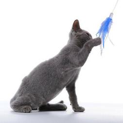 Natural Feather-Rotating-Pet-Entertainment-Multifunction-Fun