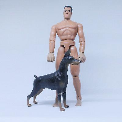 1/6 Small Dobermann Dog Toy 12