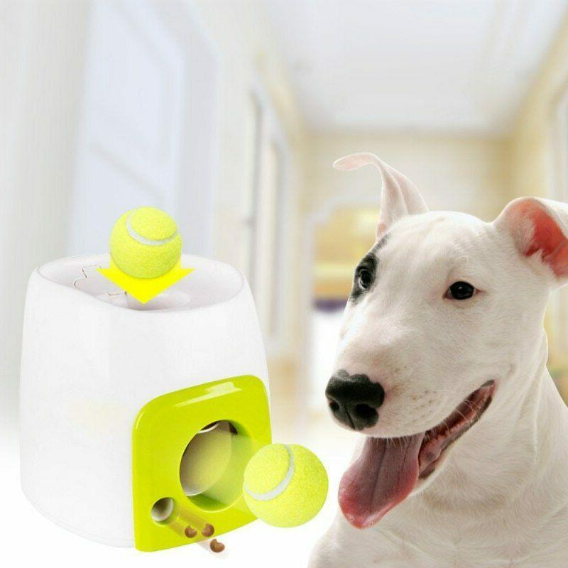 2 in 1 interactive tennis ball toys