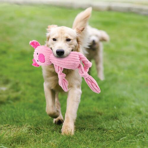 4 Toys Durable Plush Toy Pets w/