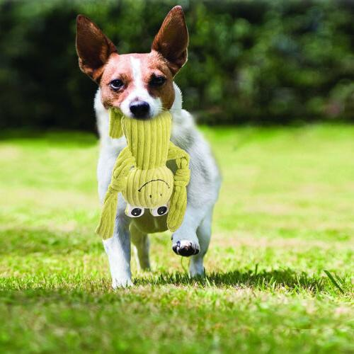 4 Dog Toys Durable for Puppy Small Pets