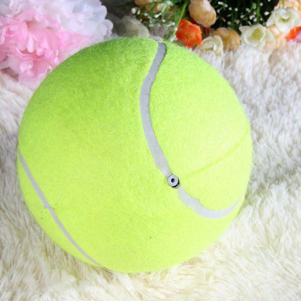 9.5' Dog Puppy Ball Thrower Toy SS