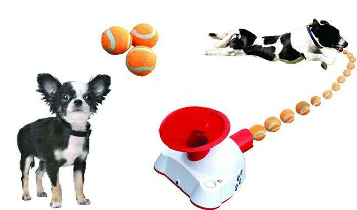 Automatic Fetch Tennis Ball Toy