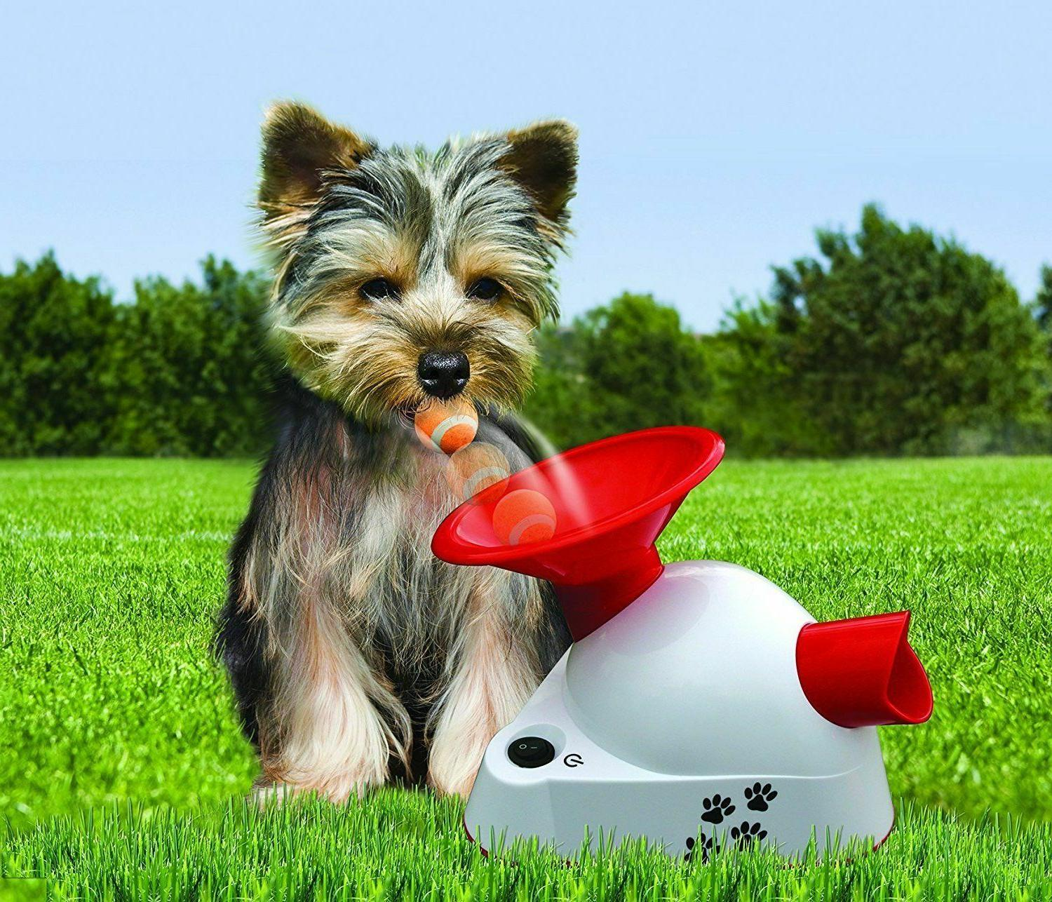 Automatic Fetch Pet Ball Thrower Toy