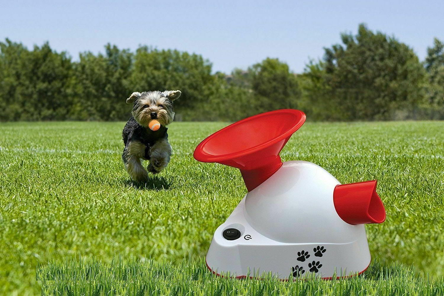 Automatic Ball Launcher Fetch Toy Tennis Ball Toy