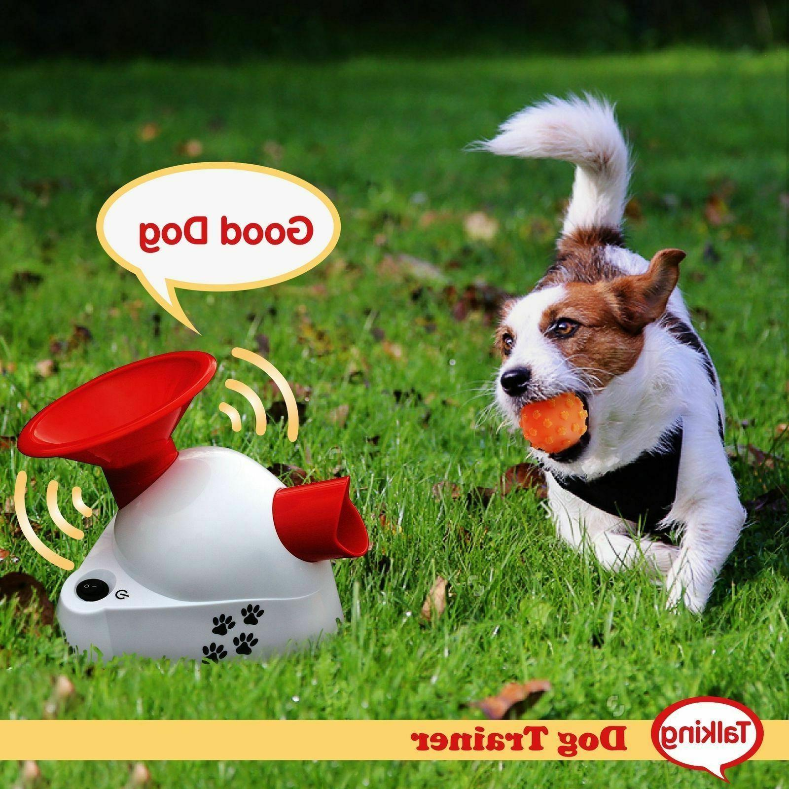 Automatic Dog Fetch Toy Pet Ball Thrower Toy