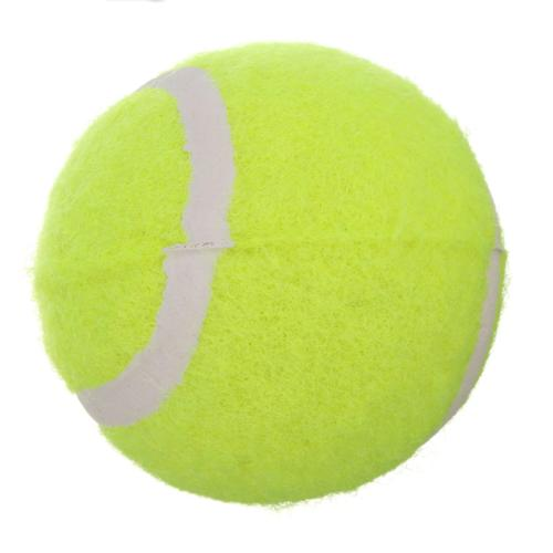 Automatic Interactive Tennis Launcher Dog Toys Throw Game