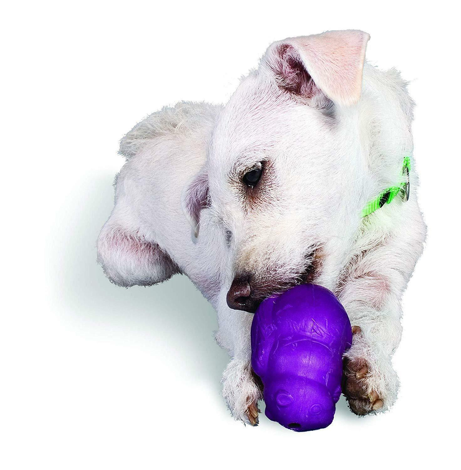 Best Dog Rubber Toy Dogs Busy
