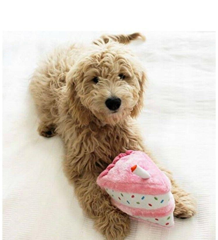 ZippyPaws- Cupcake, Squeaky Toy-2-Pack Set, Pink-Free Ship