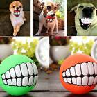 Bite Fetch Ball Pet Dog Puppy Cat Durable Treat Smile Teeth