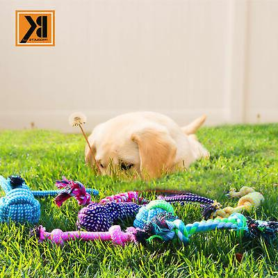 BK Play for Dogs - Set of