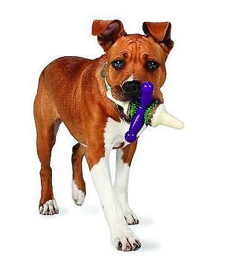 PetSafe Busy Buddy Jack Dog Toy,  Chew Toy with Treats,  Lar