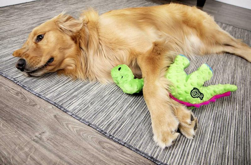 Godog Guard Squeaker Dog