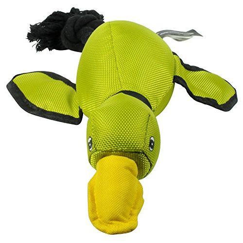 Hyper Pet Slingshot Dog