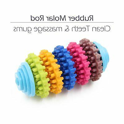 10 Set Chew Squeaky Small M... Free