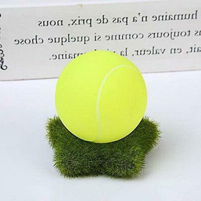 Dog Chewers Toy Non US