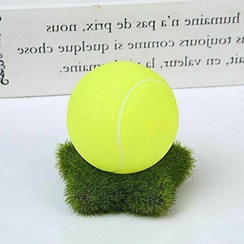 Dog Toys Chewers Pet Ball Non Toxic Squeaky Us