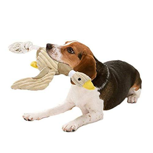 dog toys stuffed squeaking duck