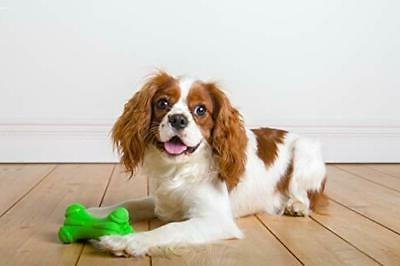 Hartz Dura Scented Dog -