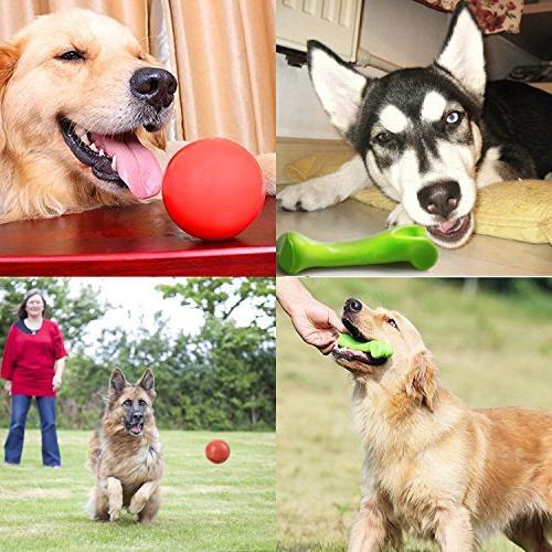 Durable Aggressive Dog Set Tough Dog Dog Ball
