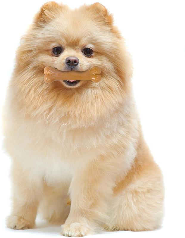 Nylabone Dog Chew