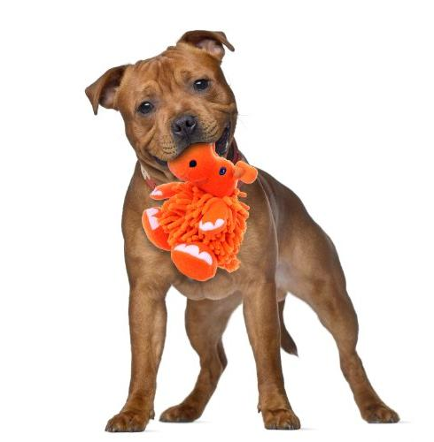 Go Dog Toy Chew Guard