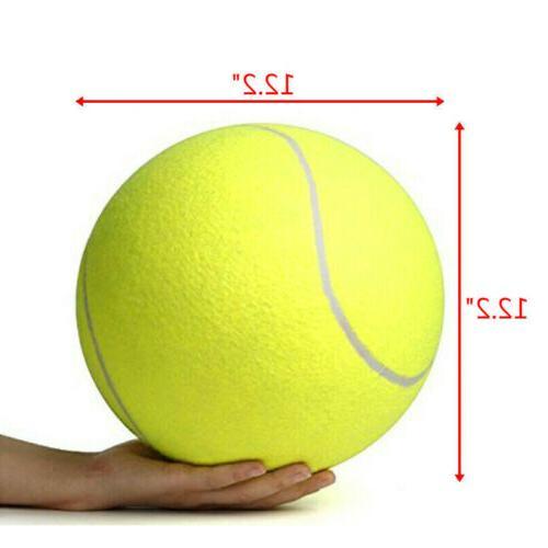 Pet Ball Chucker Play Toy