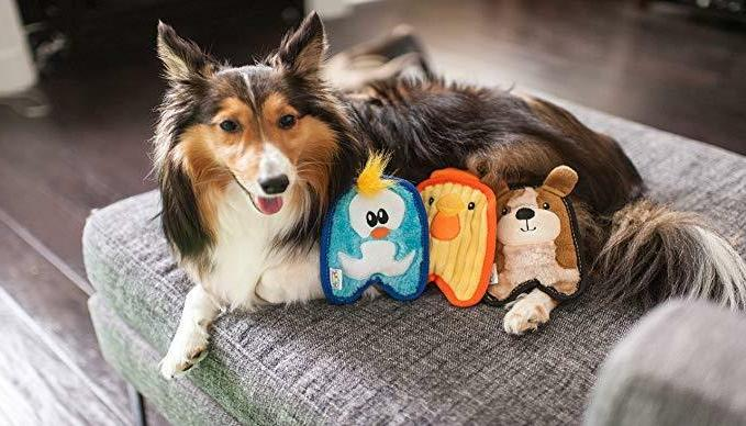 Outward Hound Invincibles Dog Toy Pig, Duck,