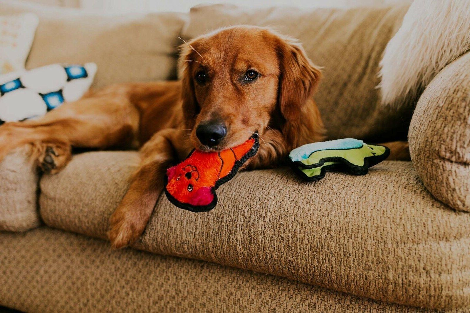 Outward Hound Dog Toy Pig, Dog, Duck,