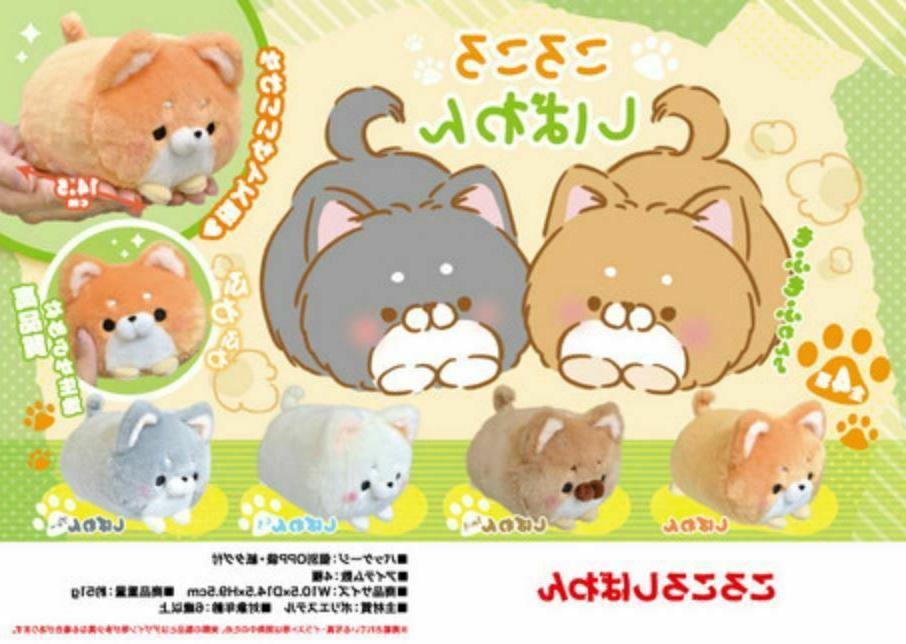 japan mochi mochi fluffy shiba inu dog