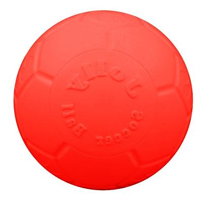 large soccer ball floating bouncing dog toy