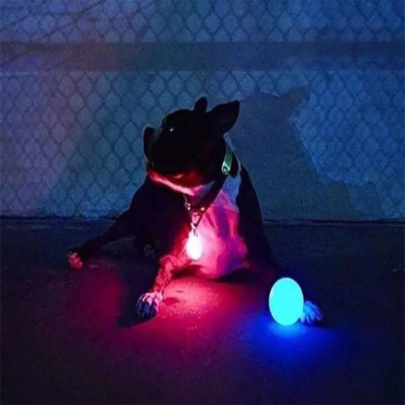 LED Ball Blinking Pet Lights Supplies Night