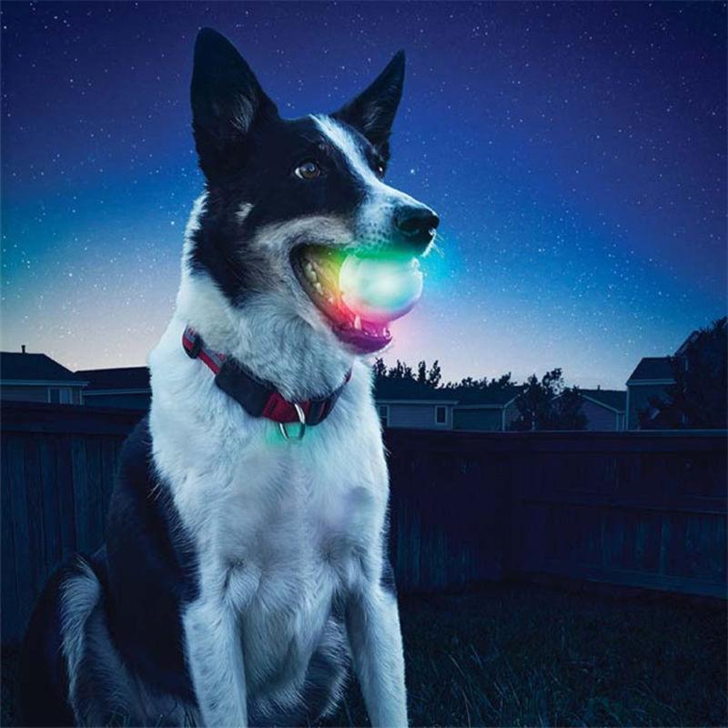 led glowing streak dog ball blinking pet