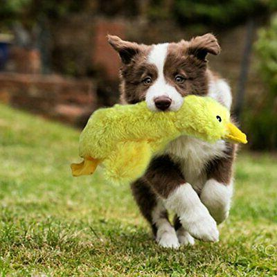 Mallard Dog Aggressive Yellow Toy Duck Large