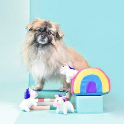 NEW in Rainbow Burrow Dog
