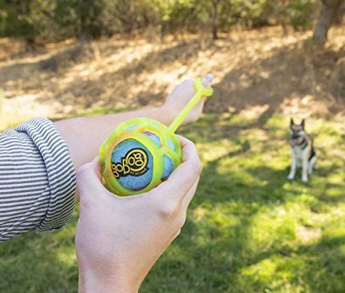 goDog with Tough Technology Ball
