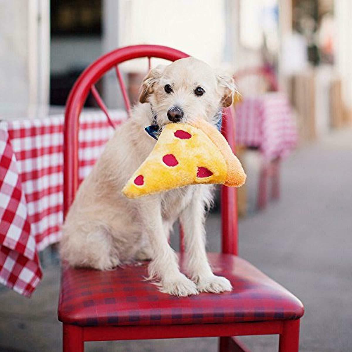 ZippyPaws Squeakie Plush Slice Cute Fun Quirky