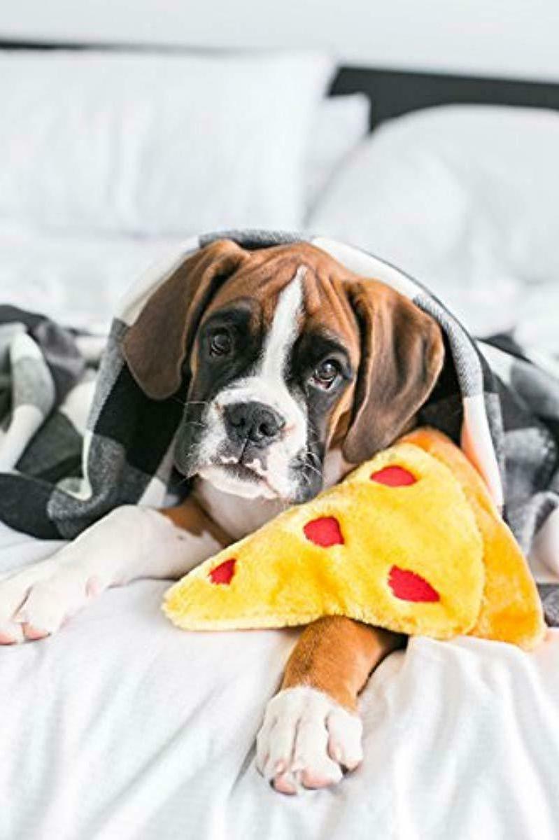 Plush Dog Pizza Slice