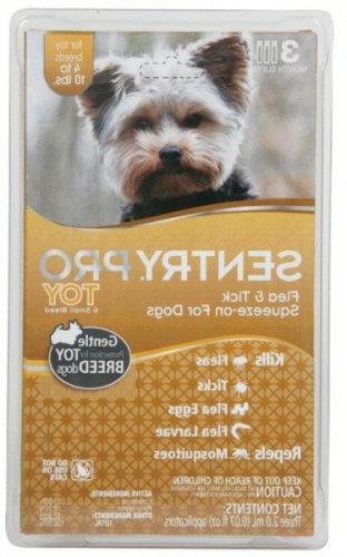 toy breed flea tick dogs
