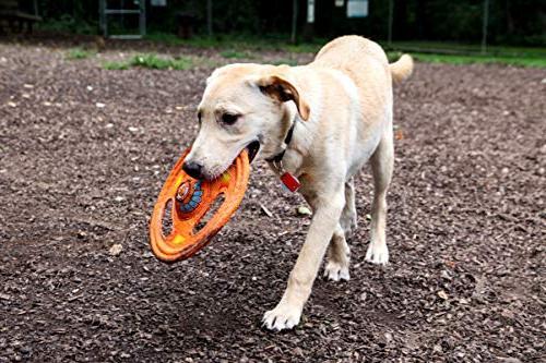 Hartz Tuff Around Dog Toy