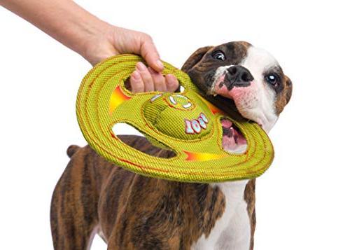 Hartz Stuff Around Flyer Dog - Medium/Large