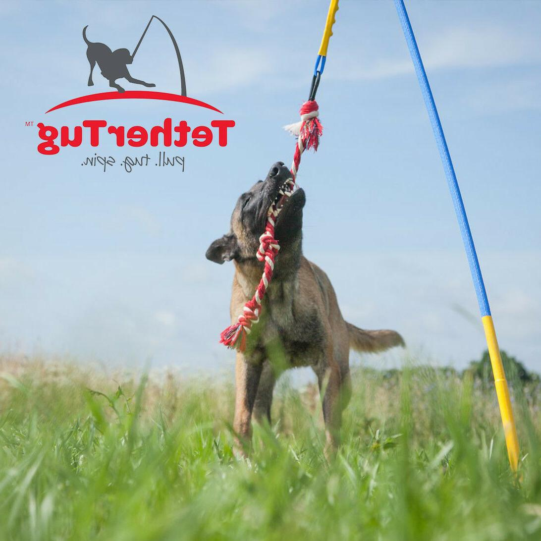 Dog Supplies Toys Toys Tether Tug V2 Outdoor Dog Toy