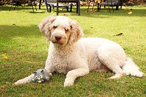 Hartz Dura Dog Toy