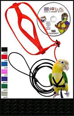The AVIATOR Pet Bird Harness and Leash: Petite Black