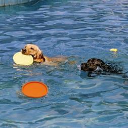 Pet Dog Toys Exercise Frisbee Toy Training Tool PVC Puppy Do