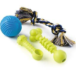 Puppy Dog Chew Toys Set – Interactive Squeaky Rubber Ball