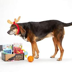 BarkBox Super Chewer Box-1 Large Dog Grinch Holiday Limited